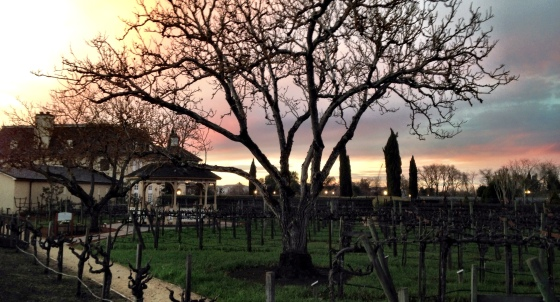 Kendall Jackson Wine Estates